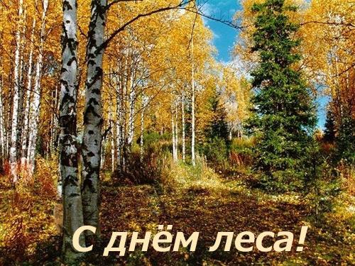 поздравления с днем леса в картинках